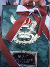 2010_12120049