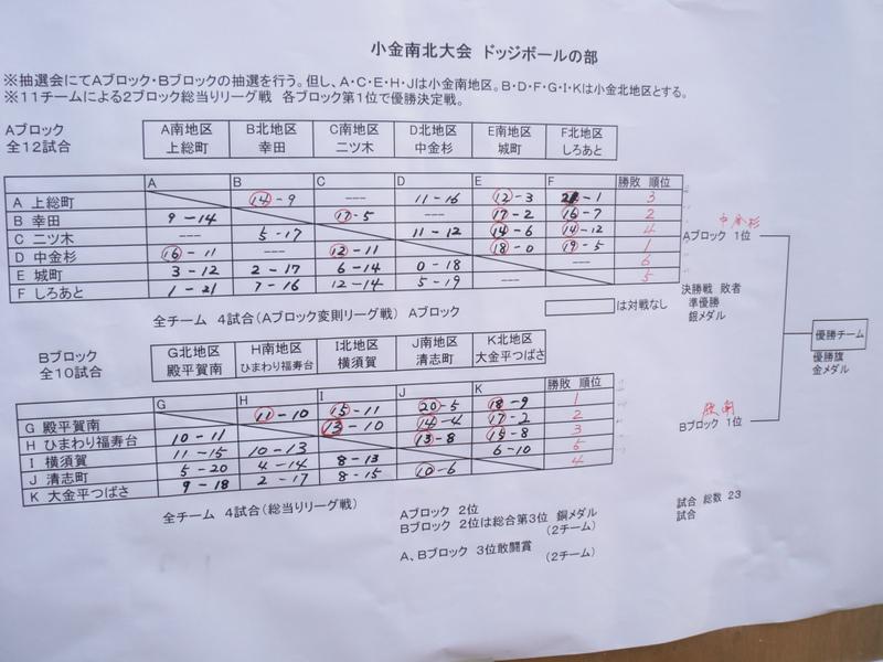 2011_11030003